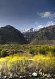 Backside of Timp stock image