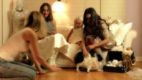 Backstage of the stylish Christmas photosession with two girls, a child and a dog in warm light studio. 4k video stock video footage