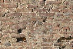 Backsteinmauer Stockbilder