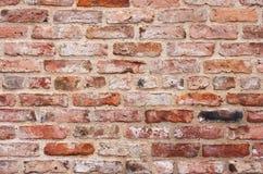 Backsteinmauer Lizenzfreie Stockfotos