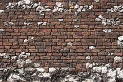 Backsteinmauer stockbild