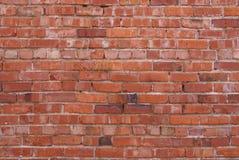 Backsteinmauer 1 Stockbilder