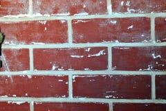 Backsteinmauer beendet  stockbild