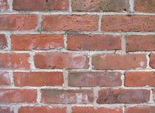 Backsteinmauer des Hintergrund-0006 Stockbilder