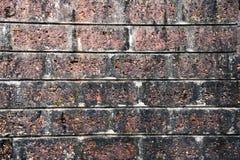 Backsteinmauer für Hintergrund Stockfotos