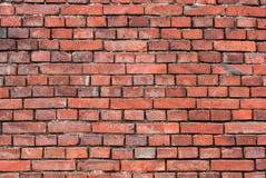 Backsteinmauer - Hintergrund Stockfotografie