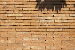 Backsteinmauer im Sommer Lizenzfreie Stockfotos