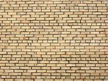Backsteinmauer im Tageslicht. Stockfoto