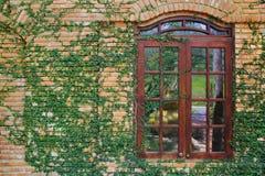 Backsteinmauer mit Fenster Stockfotografie