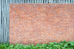 Backsteinmauer mit grünem Blatt Lizenzfreie Stockbilder