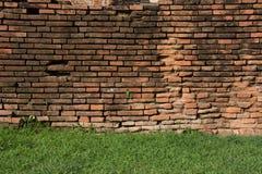 Backsteinmauer mit grünem Gras Lizenzfreies Stockbild