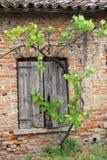 Backsteinmauer mit hölzernen Fensterrahmen des Hauses im Sommer Lizenzfreies Stockfoto
