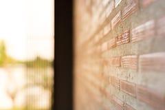 Backsteinmauer mit hellem Sun-Hintergrund Stockfotos