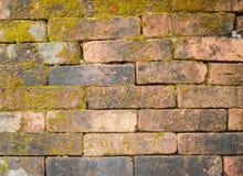 Backsteinmauer mit Moosbeschaffenheitshintergrund Lizenzfreie Stockfotos