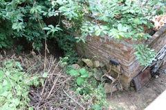 Backsteinmauer und alte Stühle im zerzausten Garten Stockfotos