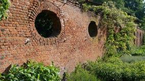 Backsteinmauer und Anlagen Lizenzfreies Stockbild