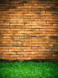 Backsteinmauer und grünes Gras Lizenzfreie Stockfotos