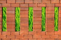 Backsteinmauer und grünes Gras Lizenzfreie Stockfotografie