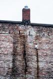 Backsteinmauer und Kamin Stockbilder