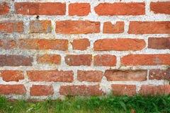 Backsteinmauer und Rasen. Stockfotos