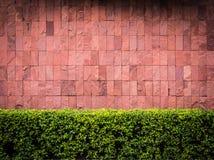 Backsteinmauer- und Zaunbusch Lizenzfreies Stockbild