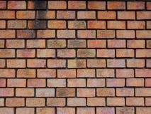Backsteinmauerbeschaffenheit für Hintergrund Lizenzfreie Stockbilder