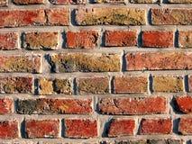 Backsteinmauerdetail stockfotos