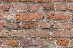 Backsteinmauerdetail Stockfoto