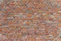Backsteinmauerdetail Lizenzfreies Stockbild