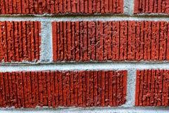 Backsteinmauernahaufnahme Stockfotos