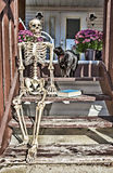 Backstep Skeleton & Black Cat Royalty Free Stock Images