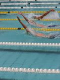 Backstroke. Race Stock Photos