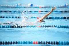 Backstroke  race. Swimmer in the lanes swimming the backstroke Royalty Free Stock Photos
