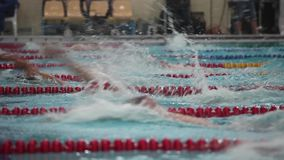 Backstroke race tracking shot view of the low angle stock footage