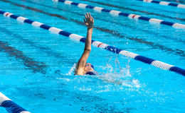 Backstroke swimmer. Young backstroke swimmer swimming in outdoor pool Royalty Free Stock Photography