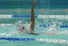 Backstroke swimmer stock photography