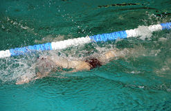 Backstroke swimming Stock Image