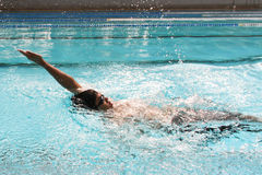Backstroke. In the swimming pool Stock Images