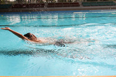 Backstroke. In the swimming pool Stock Photography