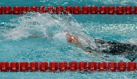 Backstroke swimming woman. Swimmer in swimming pool Royalty Free Stock Photos