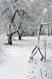 Backup-a snag in the winter garden. Backup-a snag in the winter garden stock photography
