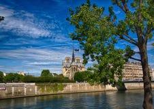 Backview Katedralny Notre Damae rzeczny wonton przy Ile De Los angeles Citï ¿ ½ przy Paryż i Fotografia Stock