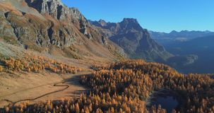 Backward aerial over alpine mountain valley lake and orange larch forest woods in sunny autumn.Alps outdoor colorful stock video