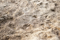 Backwashed sand of horse manege Royalty Free Stock Photo