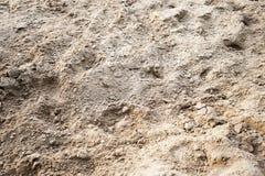 Backwashed sand of horse manege. Close-up background Royalty Free Stock Photo