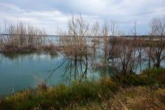 Backwater in autumn Stock Photos