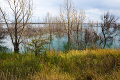 Backwater in autumn Royalty Free Stock Image