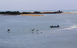 Backwater with fishermen boat and birds Stock Images