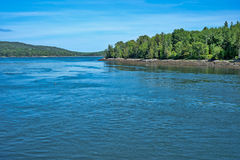 Backwater of Frenchman bay in Maine Royalty Free Stock Image