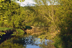 Backwater of Iowa River Stock Photos